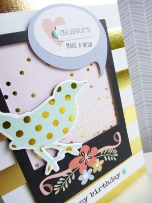 Celebrate, make a wish card - close-up