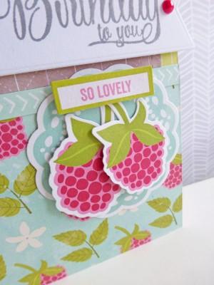 Jillibean Soup Summer Red Raspberry - The Berry Best Birthday card - detail