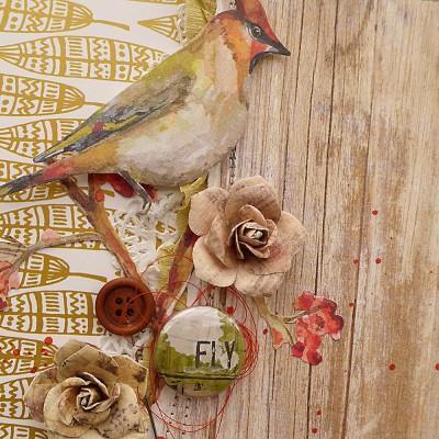 bird cameo 1