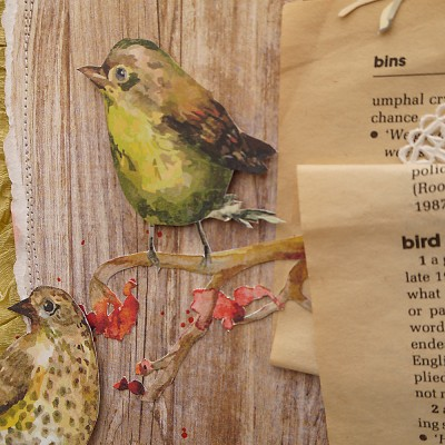 bird cameo 2