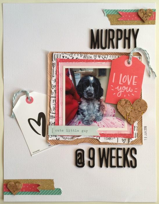 Murphy @ 9 Weeks