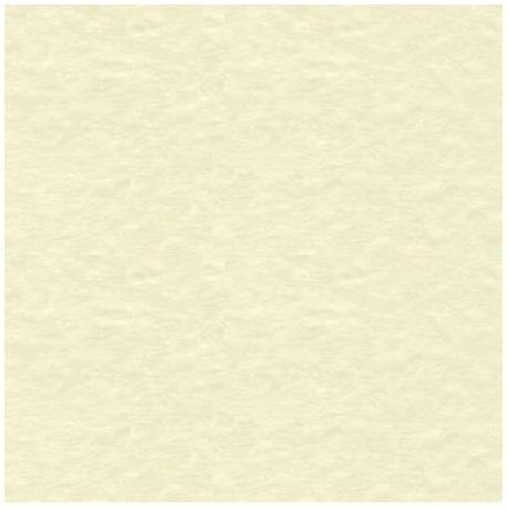 Bazzill Mono 12x12 Cardstock VANILLA